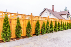 Fencing and Security